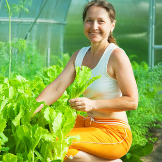 Community Gardening Cultivates Emotional & Physical Health